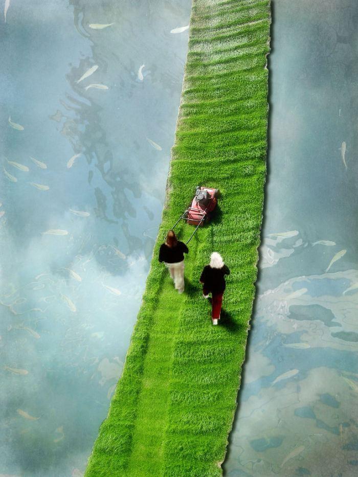 Vertical Lawn Show-Cut Short
