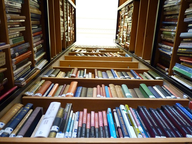 library-369008_640